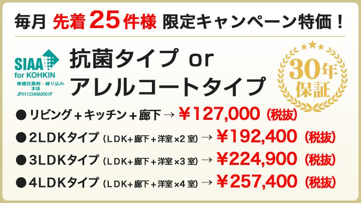 毎月 先着25件様 限定キャンペーン特価!
